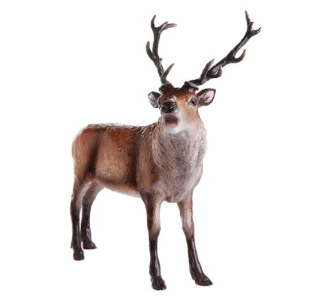Red Stag 240mm (Gift Boxed) | John Beswick
