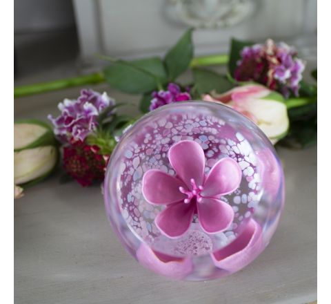 Blossom Rose Glass Paperweight, 65mm (Floral) | Caithness Glass