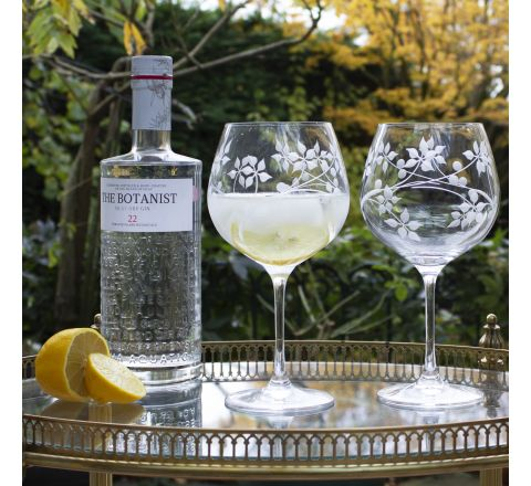 Juniper 2 - Gin and Tonic (G&T) Copa Glasses, 210mm (Gift Boxed)