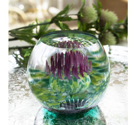 Caledonian Thistle (Flower of Scotland) Glass Paperweight (Scottish) - Exclusive to James Pirie, 80mm | Caithness Glass