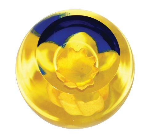 Floral Charms Daffodil glass paperweight, 67mm | James Pirie