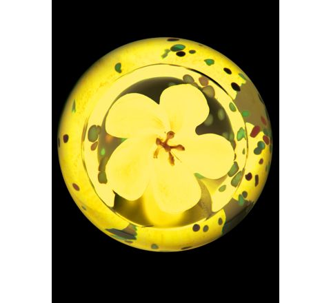 Blossom Sapphire Glass Paperweight, 65mm (Floral) | James Pirie