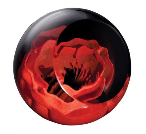 Remembrance Poppy glass paperweight, 64mm (Remembrance) | James Pirie
