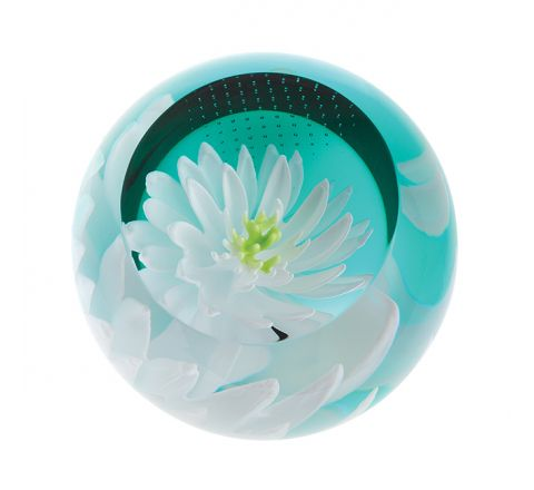 Floral Charms Waterlily glass paperweight, 67mm, | Caithness Glass