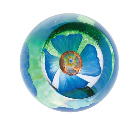 Blue Poppy glass paperweight, 66mm (Floral) |Caithness Glass