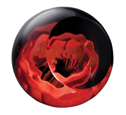 Remembrance Poppy glass paperweight, 64mm (Remembrance)   James Pirie