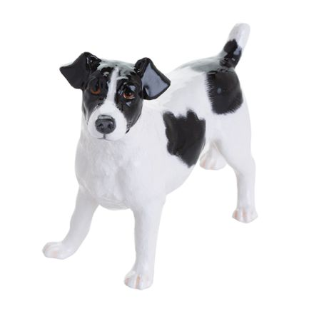 Jack Russell (Black & White)