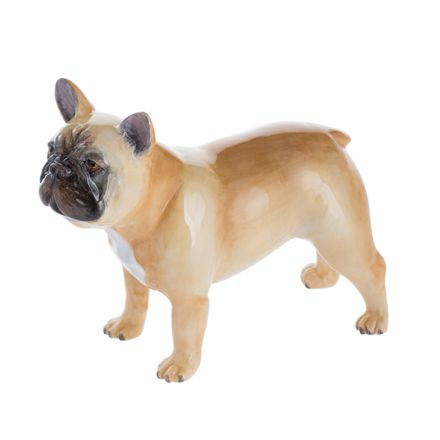 French Bulldog (Fawn)
