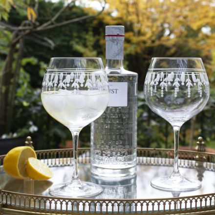 Nouveau 2 - Gin and Tonic (G&T) Copa Glasses, 210mm (Gift Boxed) - NEW